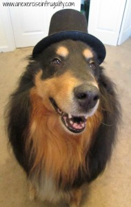 Bear with a tophat
