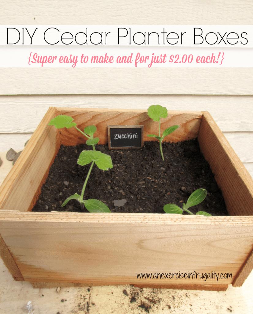 DIY Cedar planter boxes
