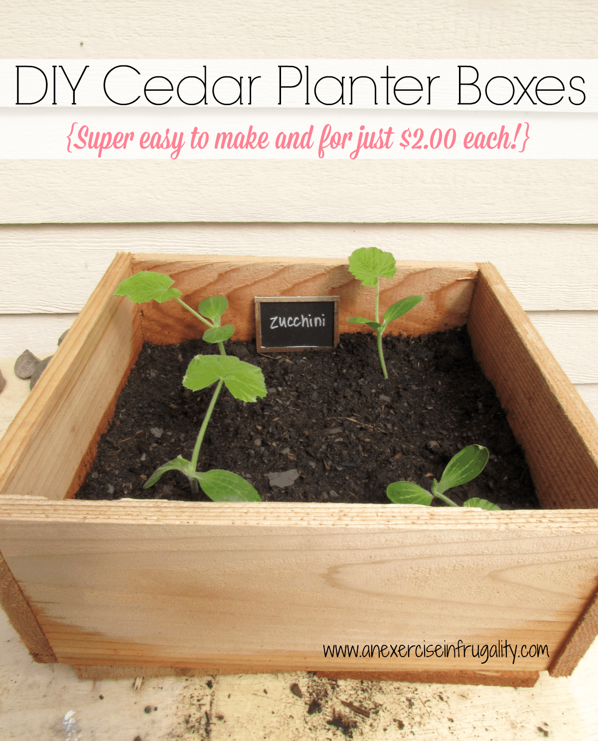 Diy Square Planter Box: Cedar Planter Boxes For Square Foot Gardening
