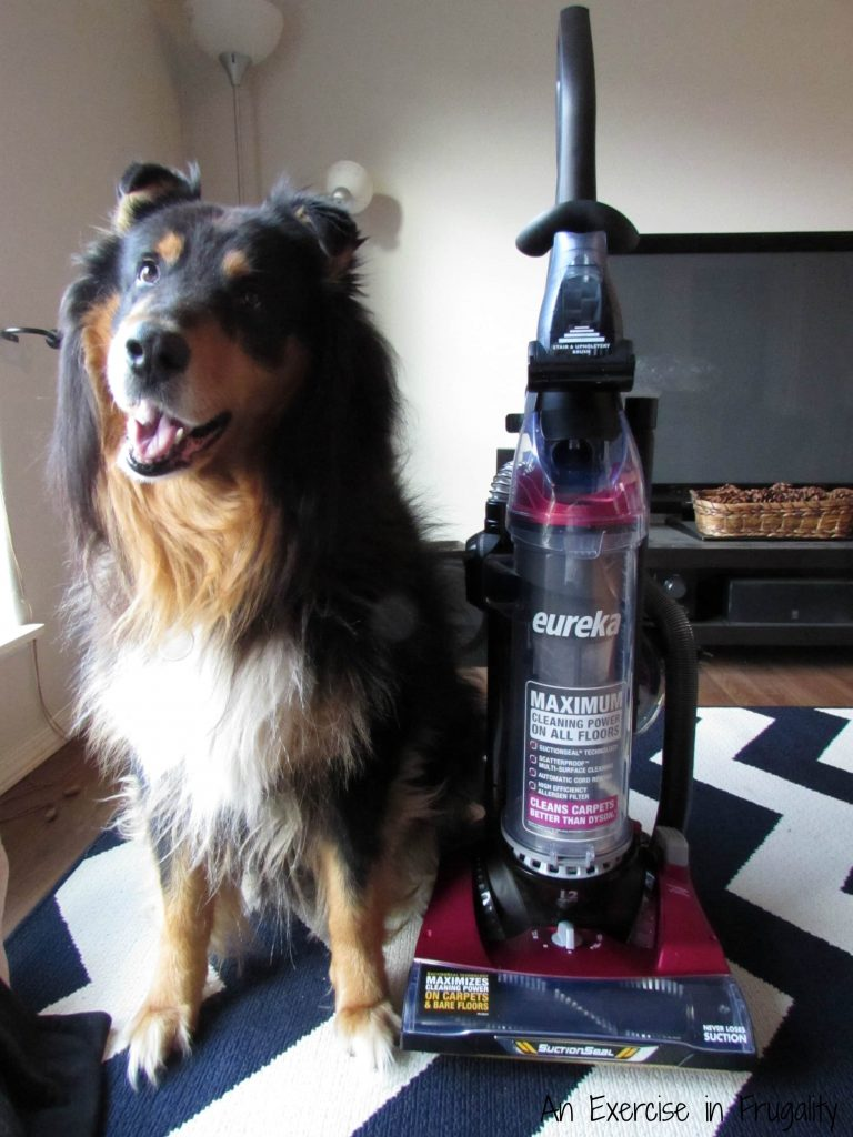 eureka-pet-mess-vacuum