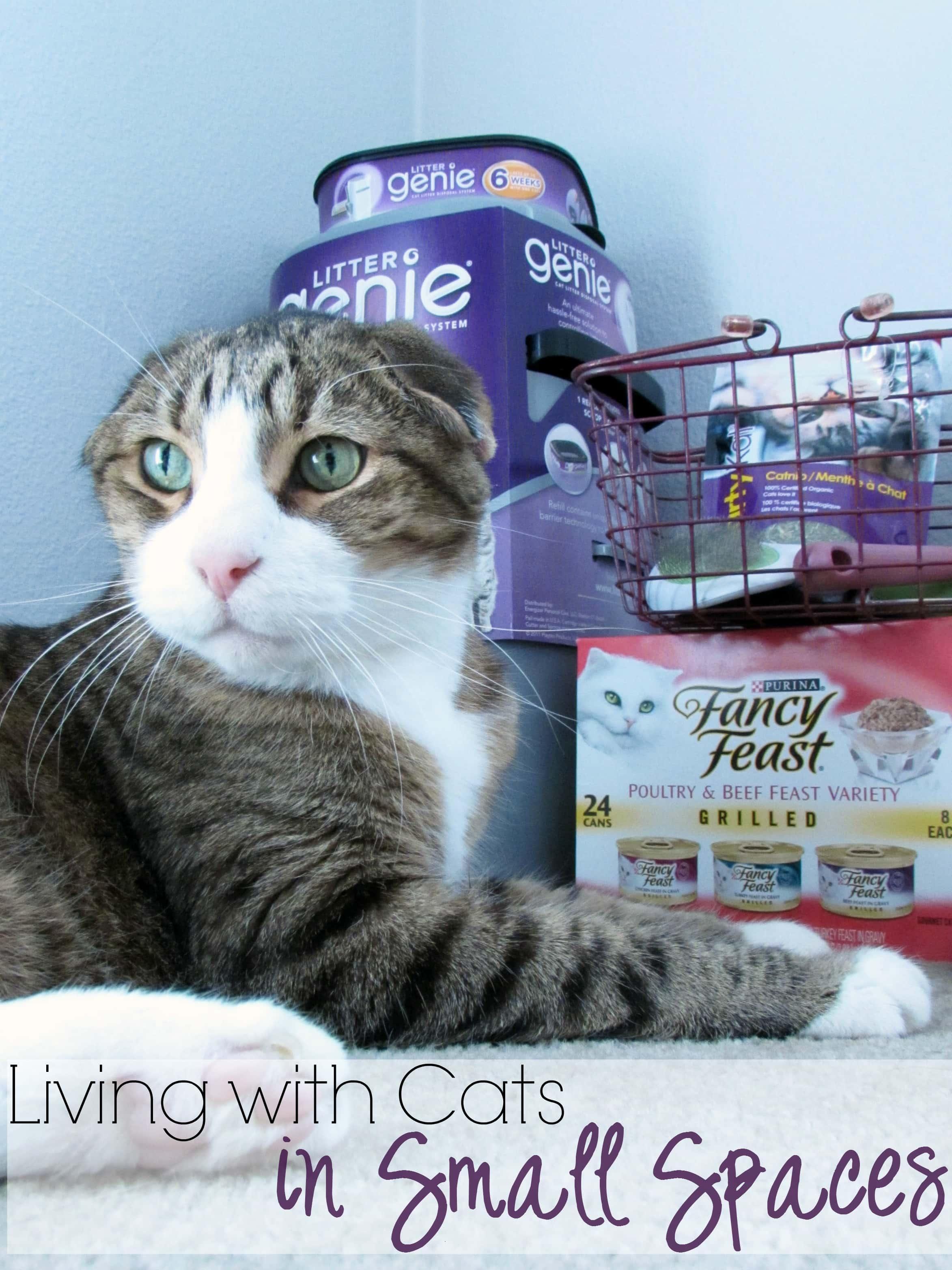 Litter Genie Cat Litter Disposal