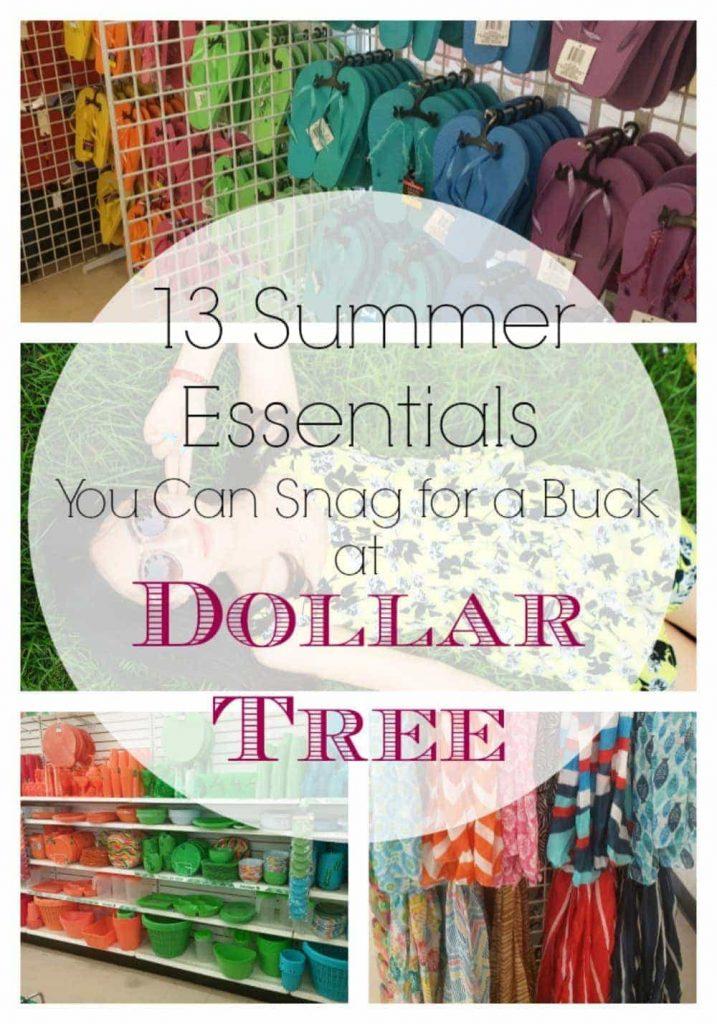 13 Summer Essentials for a dollar at Dollar Tree