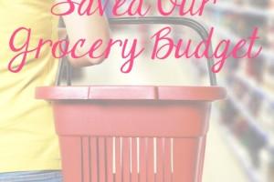 prepaid Visa debit card grocery budget