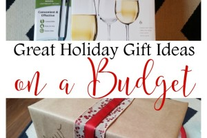 Great Holiday Gift Ideas on a Budget