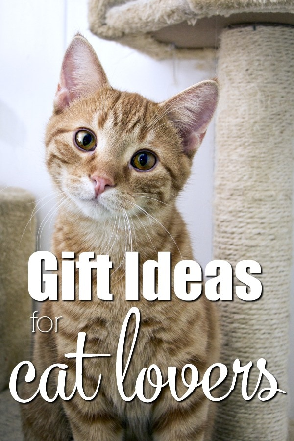 Gift Ideas for Cat Lovers- Purrfect gift ideas for the crazy cat lady in your heart! These holiday gift ideas are great for Christmas or any occasion. Make your holiday shopping list easy when you show your love for the furbabies with these great gifts for friends of felines. #Christmas #holiday #shopping #gifts #AmazonPrime #meow